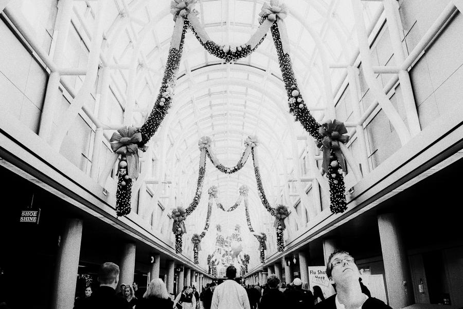 carly bish photography :: Christmas 2009